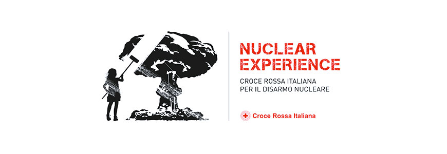 nuclear experience
